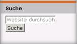 Ansicht des Feldes mit der Such-Funktion für die Internet-Seite.